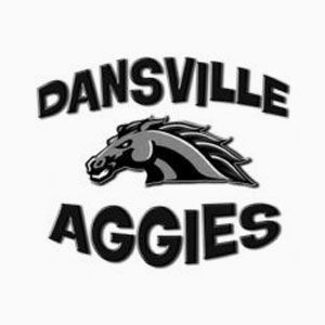 Dansville High School